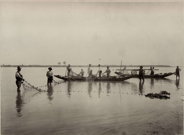 Folding of a large fishing net (a dragnet, alov) into a boat (SASA Archive, 14197/6)